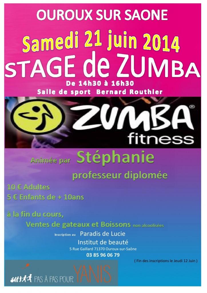 affiche zumba 2